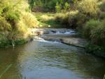 电鱼的小溪