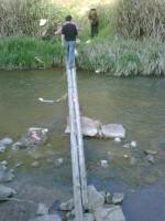 小溪上的简陋木桥